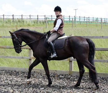 Introductory Riding Lesson at Thurleigh Equestrian Centre