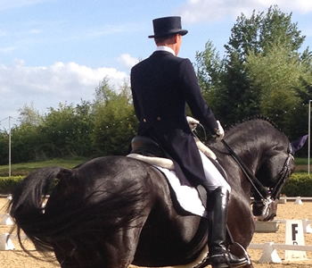 DIPLOMA IN PREPARING YOUR HORSE  FOR COMPETITION